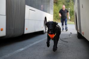 Training Manderbach Lauber 06.09 (90)